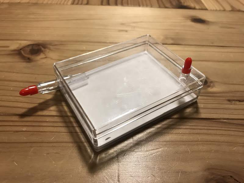 平型石膏飼育ケース