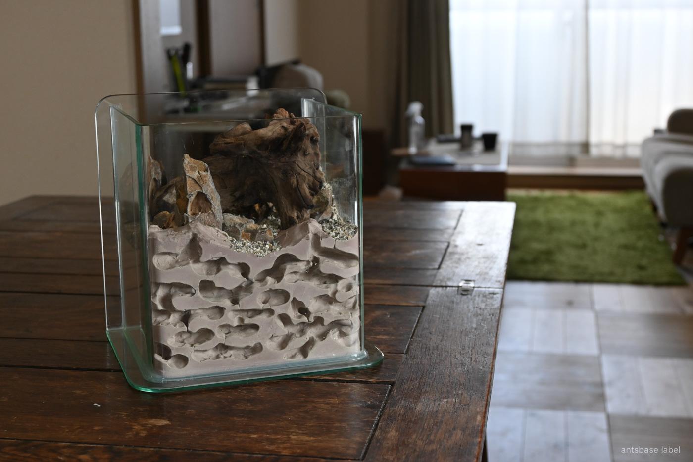 アリの巣型飼育ケース