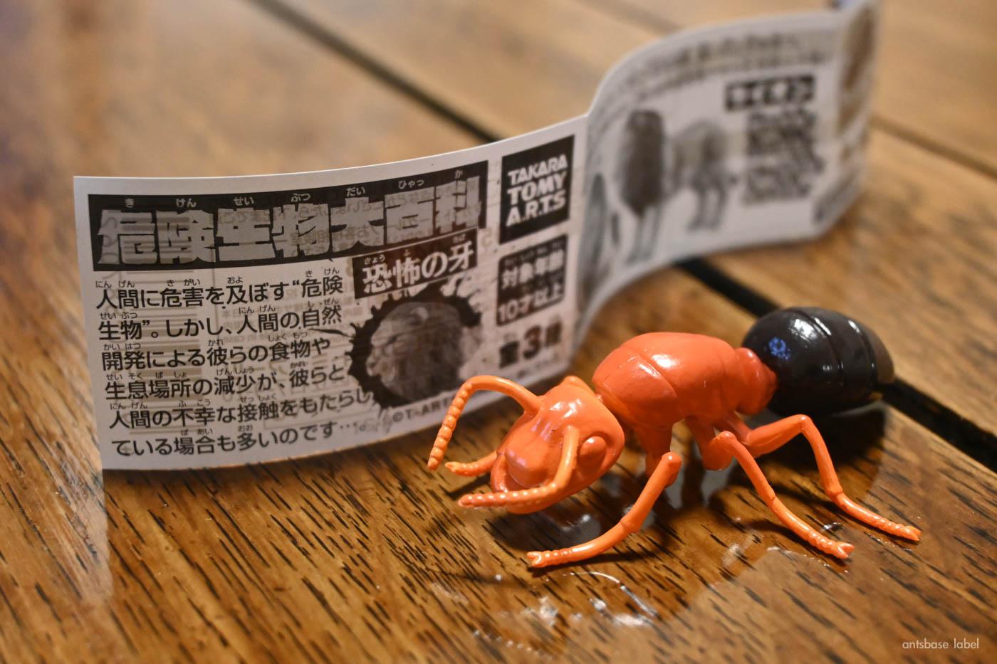 ヒアリのカプセルトイ(ガチャ)が2月上旬に発売!【実物レビュー】